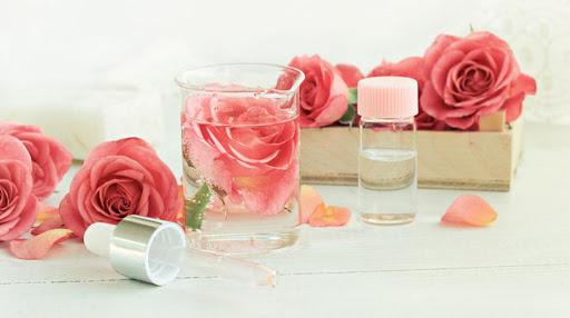 Chống lão hóa da từ nước hoa hồng được nhiều cô gái yêu thích